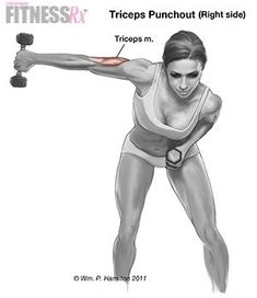 Punch-outs for Shapely Arms Tighten and Tone Your Triceps ~ Fitness RX Pilates, Fitness Diet, Health Fitness, Workout Fitness, Health Diet, Forma Fitness, Bora Malhar, Biceps And Triceps, Triceps Workout