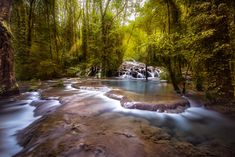 River in undergrowth Waterfall, Activities, Rivers, Outdoor, Outdoors, Waterfalls, River, Outdoor Games, The Great Outdoors