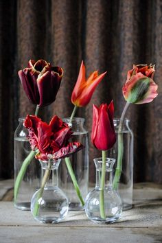 """Simple tulip arrangements are a prefect idea for spring  Love fresh flowers in a variety of """"vases"""""""