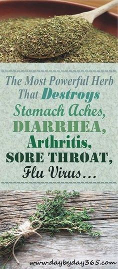 Arthritis Remedies Ever whonder about natural remedies and the power of herb read more about The Most Powerful Herb That Destroys Stomach Aches, Diarrhea, Arthritis, Sore Throat, Flu Virus… Natural Medicine, Herbal Medicine, Natural Herbs, Natural Health, Stomach Ache And Diarrhea, Thyme Essential Oil, Arthritis Remedies, Health Remedies, Arthritis Exercises