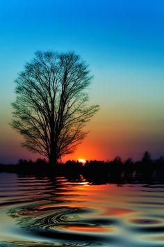 Sunset Reflection, Ontario, Canada.Todos los paisajes de Canada son hermosos.