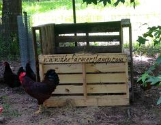 J built this simple pallet bin for me to toss the muck from cleaning out the coop. It composts right there and then we use it around the farm. Of course the flock had to check it out first. #pallet projects, #compost bin, #pallet