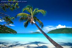 St. John, US Virgin Islands - Such a beautiful place!!! It's one of my favorite places to go!!