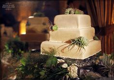 Succulent Wedding Cake so Cute!!!!