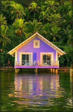 A Purple House on The Water. This is soooo cute!