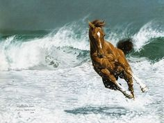 Lesley Harrison Painting  Animals That Touch The Heart  - Horse in Water  - Lesley Harrison Horse Paintings Wallpaper  27
