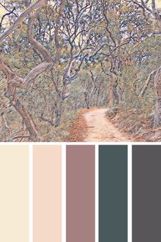 Earth Tone Colors For Bedroom, mauve color scheme for bedroom Color Palette For Home, Color Schemes Colour Palettes, Colour Pallette, Color Schemes With Gray, Home Color Schemes, Popular Color Schemes, Rustic Color Palettes, Interior Design Color Schemes, Bathroom Color Schemes