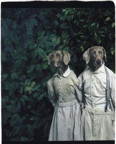 William Wegman, Hans & Grietje. The fairytale photo. What's the fairytale?