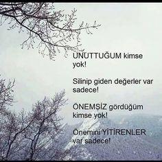 melike Koçer @melikekcr Instagram photos   Websta