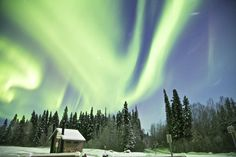 Northern lights over the outhouse at Salcha River cabin Alaska.