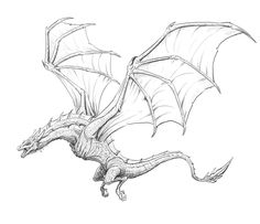 """Welcome to another step by step tutorial. This time we will focus on """"How to draw a Dragon step by step"""". Doesn't matter if you work digital or traditional Realistic Dragon Drawing, Cool Dragon Drawings, Dragon Sketch, Dragon Artwork, Art Drawings Sketches Simple, Pencil Art Drawings, Drawing Ideas, Tatuagem Game Of Thrones, Dragon Anatomy"""