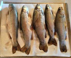 trout5 How to Make the Best Ever Brine for Smoked Fish