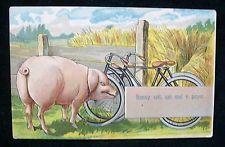 Postcard Honni soit Qui Mal Y Pense Porc French Pig Evil be Him who Evil Thinks