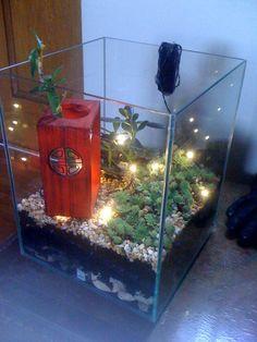 Et voilà comment recycler l'aquarium de mes poissons en bac à plantes zen. Les loupiottes viennent de chez Ikea. Les plantes grasses n'ont pas besoin de beaucoup d'eau ce qui facilite le nettoyage du bac. Les couches sont constituées de : gros cailloux pour faciliter le renouvellement de l'air, de terre et de petits cailloux décoratifs.