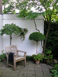 Garden of Mimi Prins (NL) with two small attractive trees in front of a white wall and some pink coloured plants - De toevallige tuin