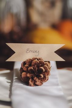Pine Cone Place Cards