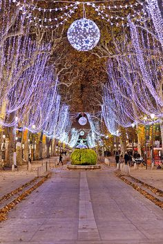 Cours Mirabeau, Aix en Provence | Flickr - Photo Sharing!