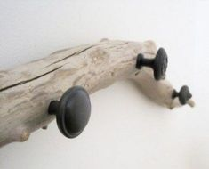 Ideas for drift wood diy projects coat racks Branch Art, Branch Decor, Wall Decor, Driftwood Crafts, Driftwood Macrame, Driftwood Ideas, Driftwood Beach, Creation Deco, Diy Holz