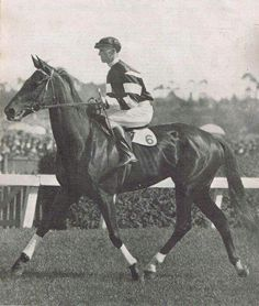 Phar Lap my favorite!