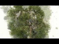 how to make realistic model trees - bäume selber bauen - YouTube