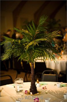 mini palm tree centerpiece - great for a beach themed wedding or party, and you could DIY it!