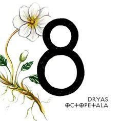 #36daysoftype03 #36days_8 #36daysoftype