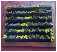 I wonder what vegetables would work best in this vertical hanging garden!