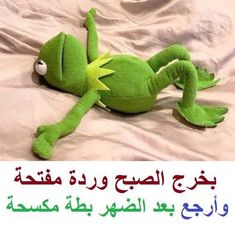 Arabic Memes, Arabic Funny, Funny Arabic Quotes, Funny Qoutes, Jokes Quotes, Funny Texts, Sunday Images, Good Morning Images Hd, Funny Profile