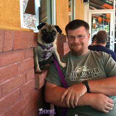 Labor Day at Panera Bread #pixelpugprincess #pugs