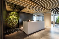 Bryan Cave Leighton Paisner Offices by Circa ia, Hong Kong Corporate Office Design, Office Reception Design, Work Office Design, Dental Office Design, Workplace Design, Office Interior Design, Office Interiors, Office Ceiling Design, Office Designs