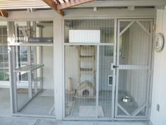 Cat+Outdoor+Enclosures | Figure 9 & 10: Cat kennel built in back yard with chicken wire and ...