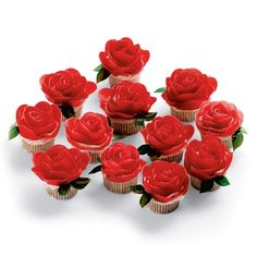 Rose Cupcakes-the roses are made by Fruit by the Foot!  The kiddos will love these!