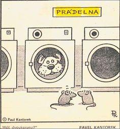 Humor, Peanuts Comics, Art, Art Background, Humour, Kunst, Funny Photos, Performing Arts, Funny Humor