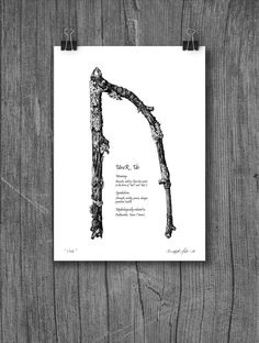 Digital drawing, inspired by forest branches and the UruR / Úr rune.  Art print size A4 (230,- NOK) / A5 (140,- NOK)  Free shipping!  Printed (by me) on acid-free 200 g/m² Fine-grained paper. Choose between no text or a short text (English or Norwegian) describing the rune.  Instagram: @nordichiddentales / @bergljothals   #rune #runemeaning #UruR #ur #urr #bergljothals #digitalart #digitalprint #etsyshop #Norwegianartist #illustration #NordicHiddenTales #runesart #viking #wallart Digital Prints, Digital Art, One More Step, Runes, Vikings, Meant To Be, My Etsy Shop, Art Prints, Free Shipping