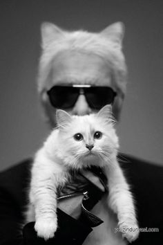 Karl Lagerfeldden Choupette Collection
