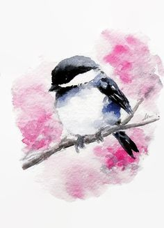 ORIGINAL Watercolor Bird Illustration Chickadee Painting Animal Art Nursery Art Hand Painted 5x7