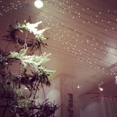 -Love the lights and the live garland circles made into a tree! Merry Christmas Happy Holidays, Noel Christmas, Holiday Store, Free People Blog, Store Displays, Twinkle Lights, Xmas Decorations, Strands, Forget