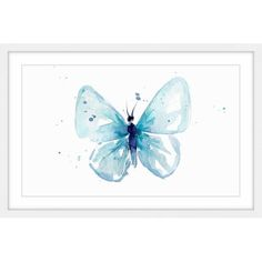 Marmont Hill Blue Splash Butterfly by Michelle Dujardin Framed Painting Print, Size: 30 inch x 20 inch, White Painting Frames, Painting Prints, Watercolor Paintings, Art Prints, Painting Art, Watercolors, Butterfly Watercolor, Butterfly Art, Butterflies