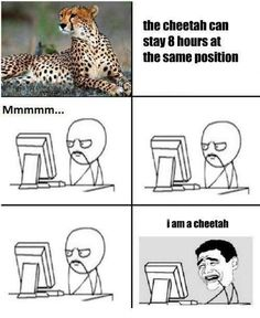 I connect with my inner cheetah everyday after school for hours. I am one with my cheetah.