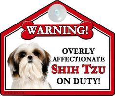 Warning! Overly Affectionate Shih Tzu on Duty!