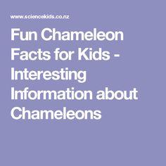 Fun Chameleon Facts for Kids - Interesting Information about Chameleons