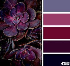 40 ideas succulent wedding colors palette shades for 2019 Colour Pallette, Colour Schemes, Color Patterns, Color Combinations, Pantone, Color Balance, Design Seeds, Colour Board, Color Swatches