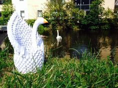 Origami swan on the banks of the River Lune