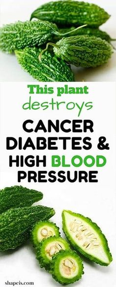 This Plant destroys Cancer, Diabetes And High Blood Pressure! #fitness #beauty #hair #workout #health #diy #skin #Pore #skincare #skintags #skintagremover #facemask #DIY #workout #womenproblems #haircare #teethcare #homerecipe