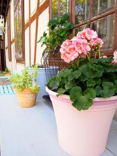 Maj 2014: przed naszą pracownią. Wiecej o meblach ogrodowych i malowaniu doniczek na http://patynowy.pl/blog,szczegoly,wyposazenie-ogrodu,77.html