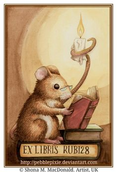 Reading Mouse Bookplate © Shona M MacDonald (Artist, UK) aka pebblepixie via DeviantArt.  ... Respect people, Respect copyright. Credit the artist. Link directly to the artist's website.  Copyright law requires that you credit the artist.   If you're not doing this: http://pinterest.com/pin/86975836525355452/  Then what are you doing? -pfb