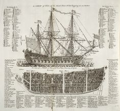 Ship of the Line Warship diagram