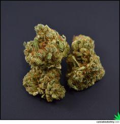 #kosher #kush #marijuana #cannabis #marijuana #weed