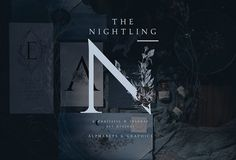 The Nightling - Art Project by OpiaDesigns on @creativemarket