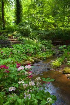 Beautiful landscaped stream in woodland garden